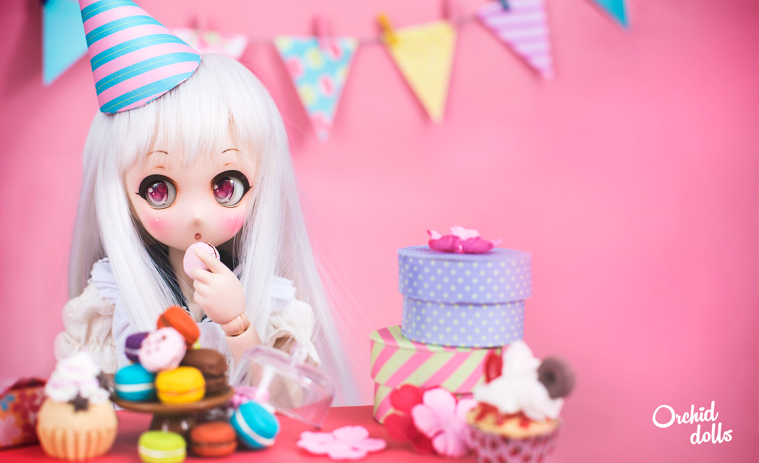 Mini Dollfie Dream Ldoll Festival