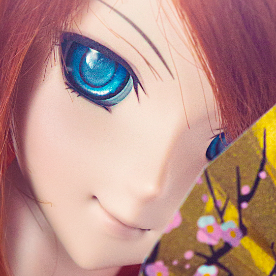 ojo dollfie dream