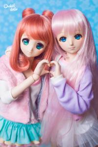Dollfie Dream blog