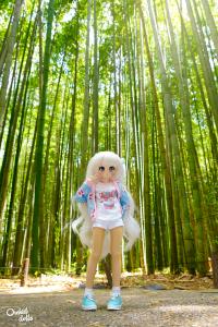 bambusal Arashiyama
