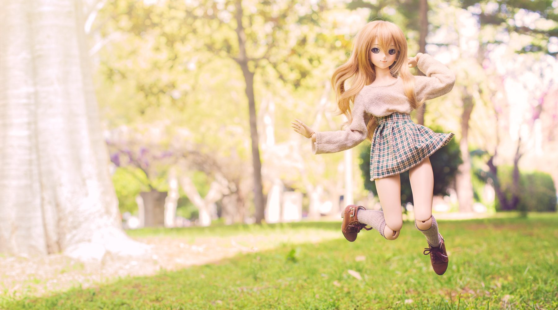 dollfie dream photography