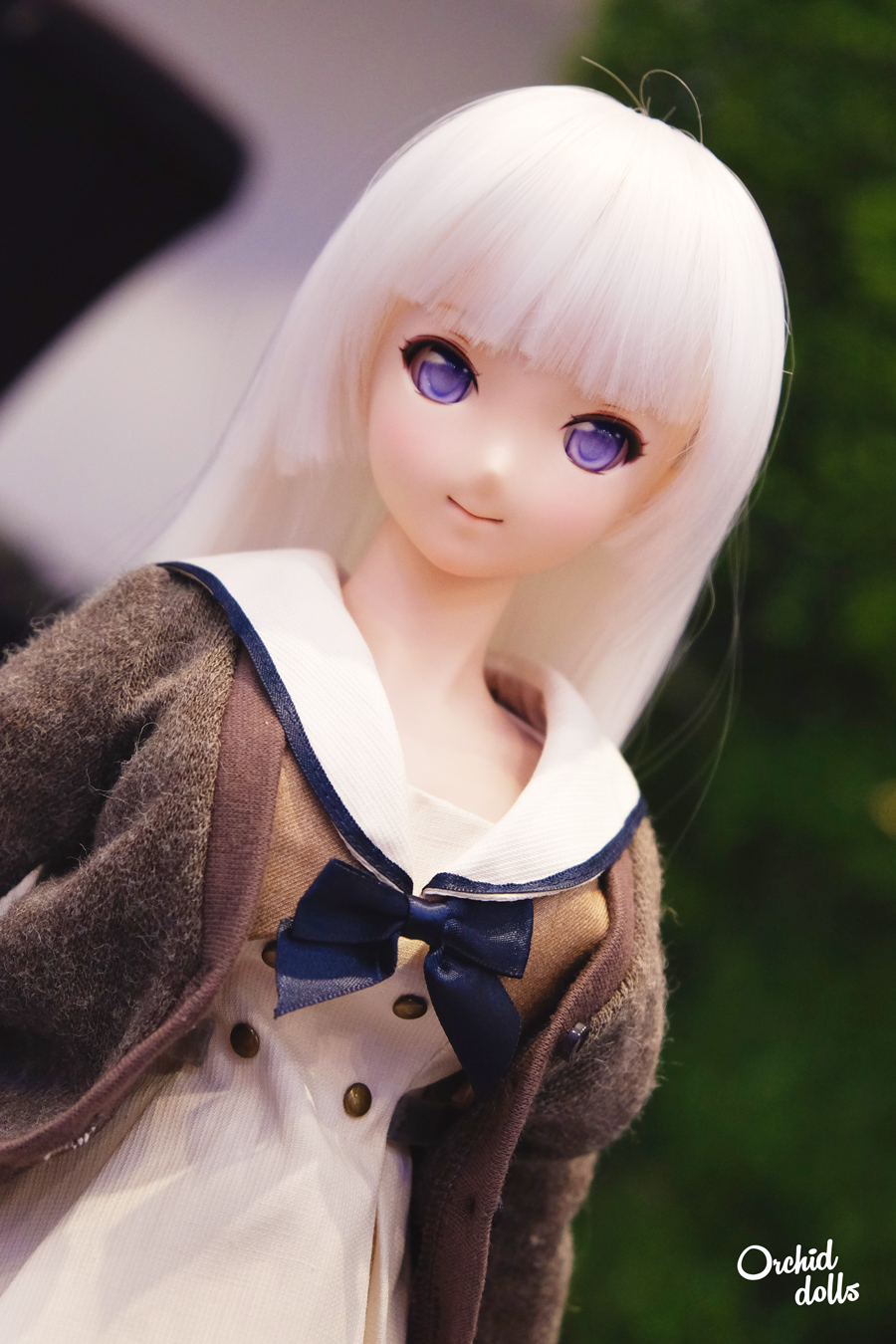 Dollfie Dream
