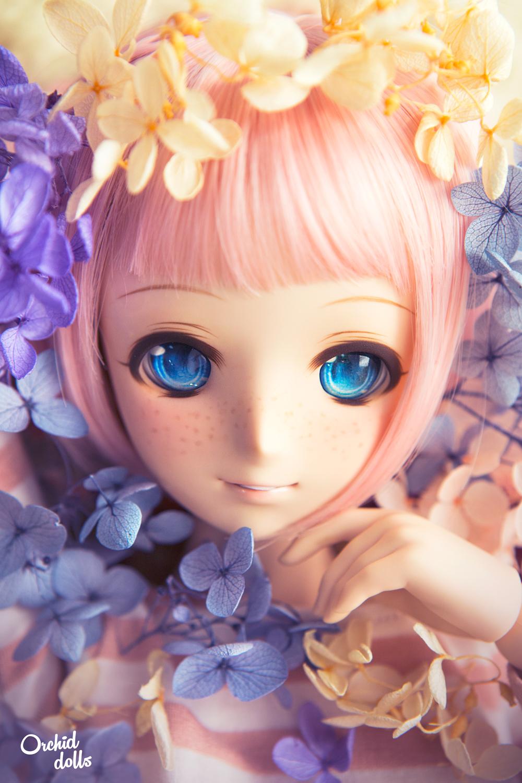 custom Dollfie Dream M.O.M.O.