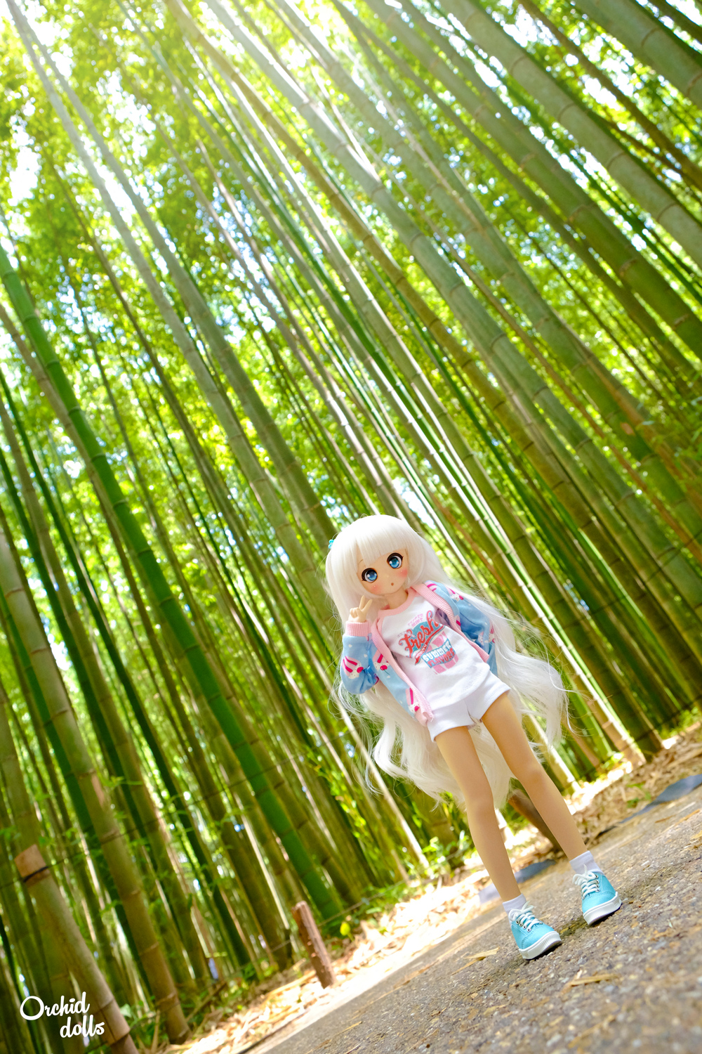 custom Mini Dollfie Dream DDH-01 Nebula Kyoto Bamboo