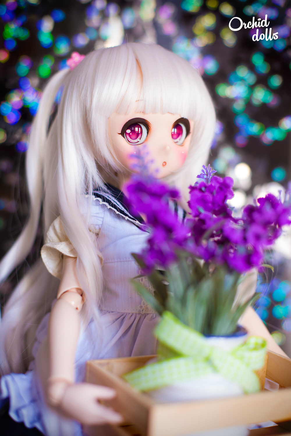 custom Mini Dollfie Dream DDH-01 Nébula llevando flores