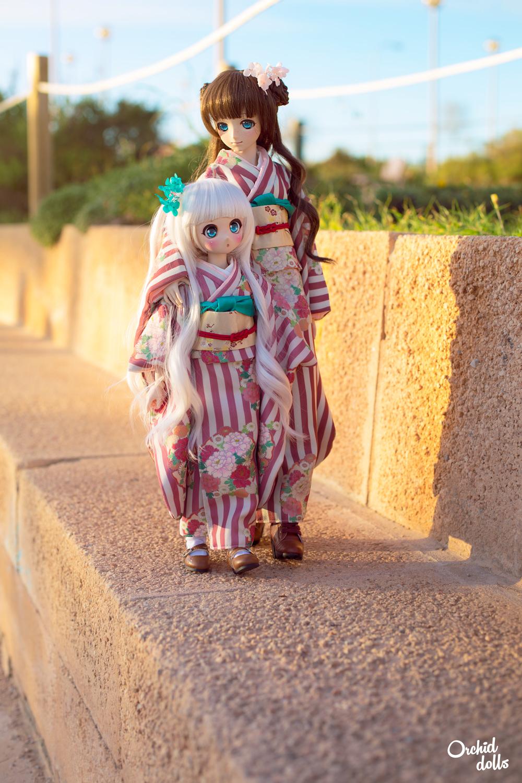 custom Dollfie Dream DDH-01 and M.O.M.O. on a walk